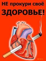 Жизнь без сигарет